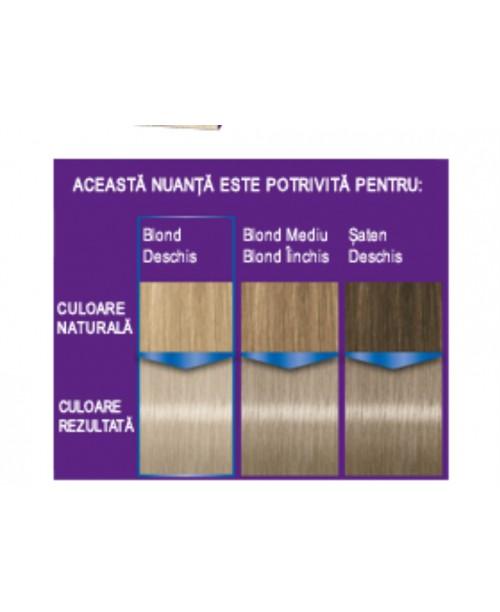 Palette Intensive Color Creme C10 - Blond Argintiu Arctic