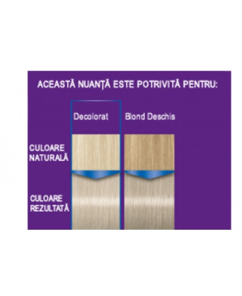 Palette Intensive Color Creme C9 - Blond Argintiu