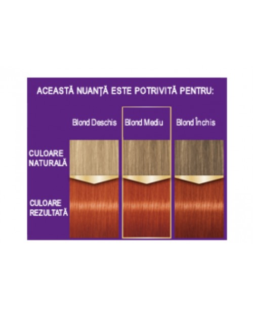 Palette Intensive Color Creme KI7 - Aramiu Intens
