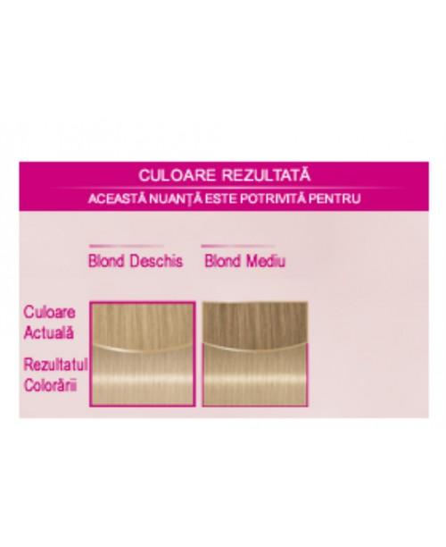 Palette Perfect Care Color 218 - Blond Rece