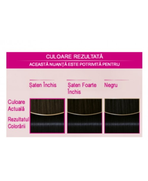 Palette Perfect Care Color 909 - Negru Albastrui
